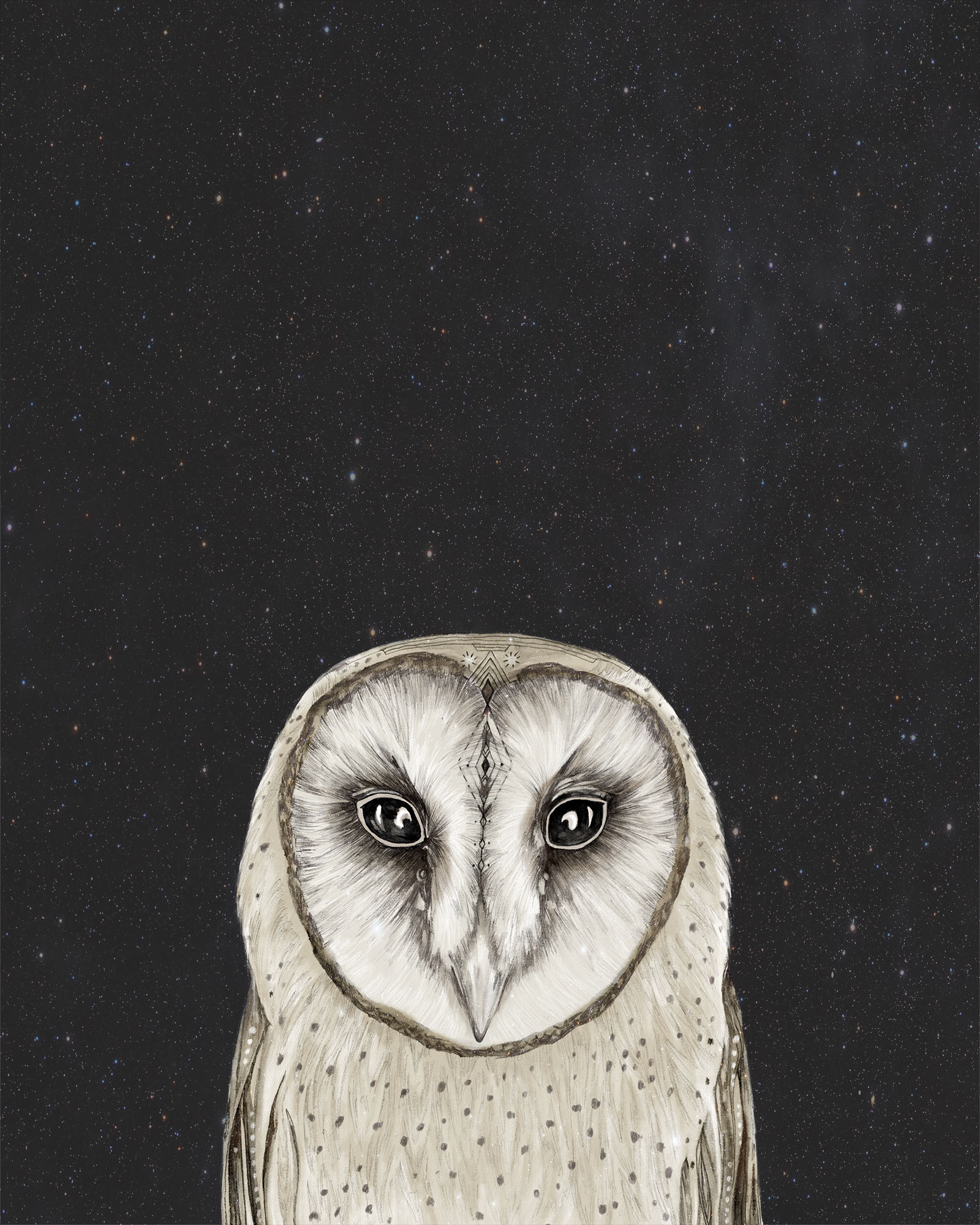 owlportraitstars8x10
